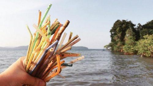 Municípios brasileiros discutem proibição de canudos plásticos