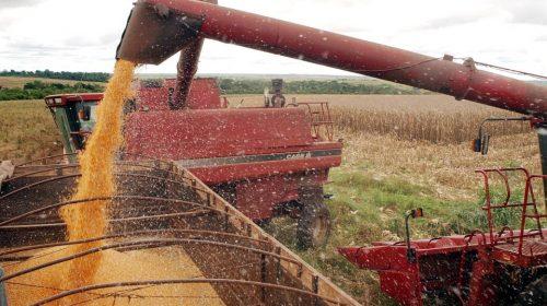Agricultura:Banco do Brasil aumenta em 20% recursos do Plano Safra 2019/2020