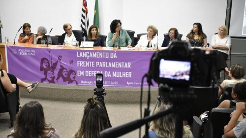 Frente em Defesa da Mulher trabalha para reduzir violência e desigualdade de gênero