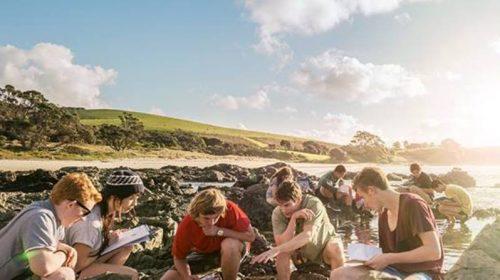 Nova Zelândia oferece bolsas de pós-graduação para brasileiros