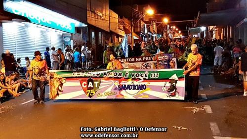 Desfile de Carnaval - Domingo, 11 de fevereiro de 2018 (100)